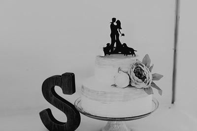 04982--©ADH Photography2017--FrankAylaSmith--Wedding