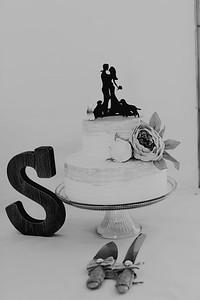 04964--©ADH Photography2017--FrankAylaSmith--Wedding