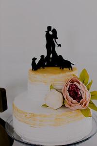 04975--©ADH Photography2017--FrankAylaSmith--Wedding