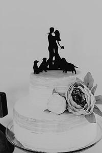 04976--©ADH Photography2017--FrankAylaSmith--Wedding
