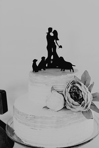 04978--©ADH Photography2017--FrankAylaSmith--Wedding