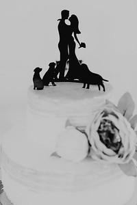 04986--©ADH Photography2017--FrankAylaSmith--Wedding