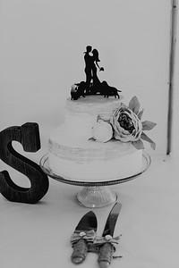 04970--©ADH Photography2017--FrankAylaSmith--Wedding