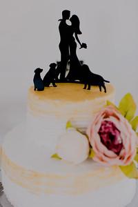 04983--©ADH Photography2017--FrankAylaSmith--Wedding