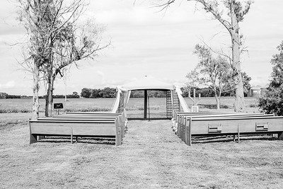 04798--©ADH Photography2017--FrankAylaSmith--Wedding