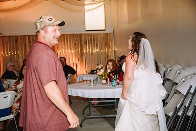 06667--©ADH Photography2017--FrankAylaSmith--Wedding