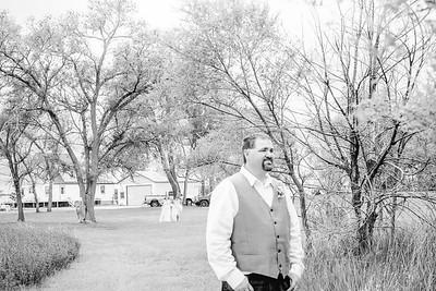 00748--©ADH Photography2017--FrankAylaSmith--Wedding