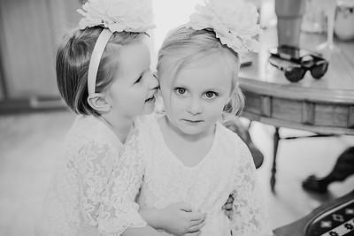 00106--©ADH Photography2017--FrankAylaSmith--Wedding