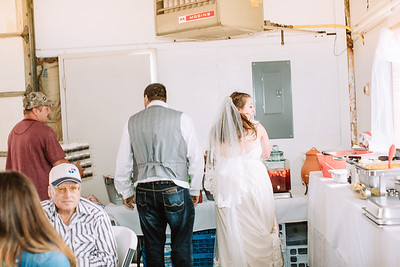 06249--©ADH Photography2017--FrankAylaSmith--Wedding