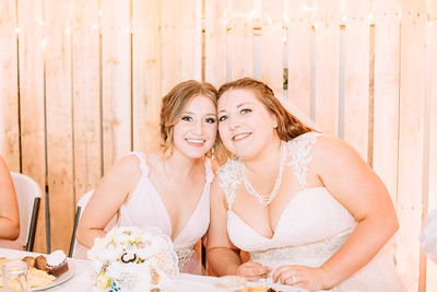 06283--©ADH Photography2017--FrankAylaSmith--Wedding