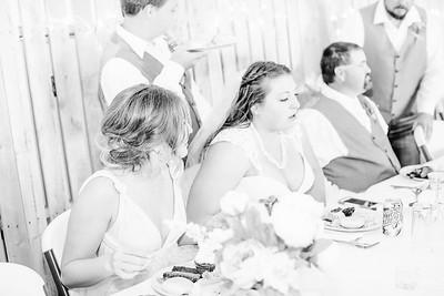 06268--©ADH Photography2017--FrankAylaSmith--Wedding