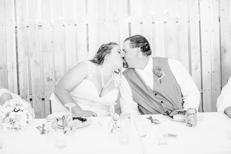 06282--©ADH Photography2017--FrankAylaSmith--Wedding