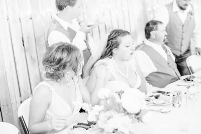 06270--©ADH Photography2017--FrankAylaSmith--Wedding