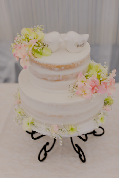 04863--©ADH Photography2017--SethCariStone--Wedding