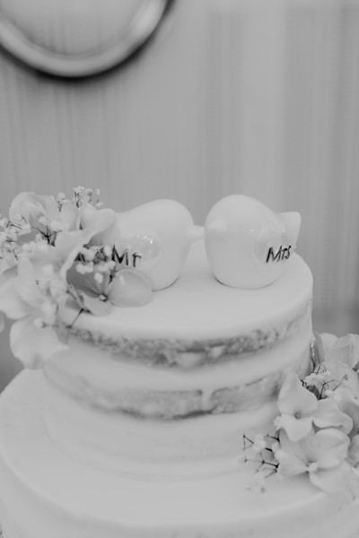 04850--©ADH Photography2017--SethCariStone--Wedding
