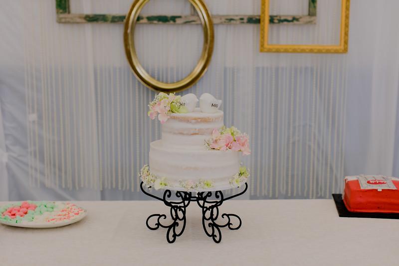 04859--©ADH Photography2017--SethCariStone--Wedding