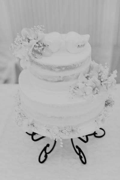 04864--©ADH Photography2017--SethCariStone--Wedding