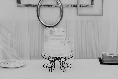 04860--©ADH Photography2017--SethCariStone--Wedding