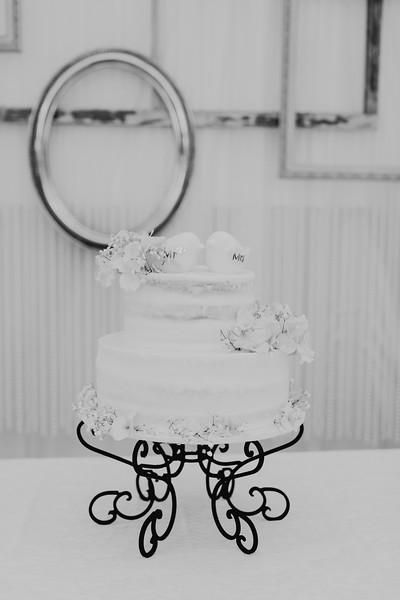 04842--©ADH Photography2017--SethCariStone--Wedding