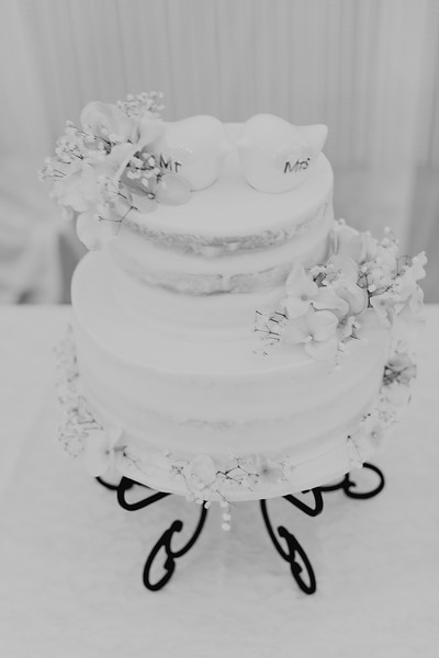 04862--©ADH Photography2017--SethCariStone--Wedding