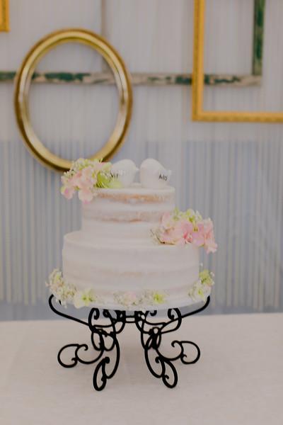 04843--©ADH Photography2017--SethCariStone--Wedding