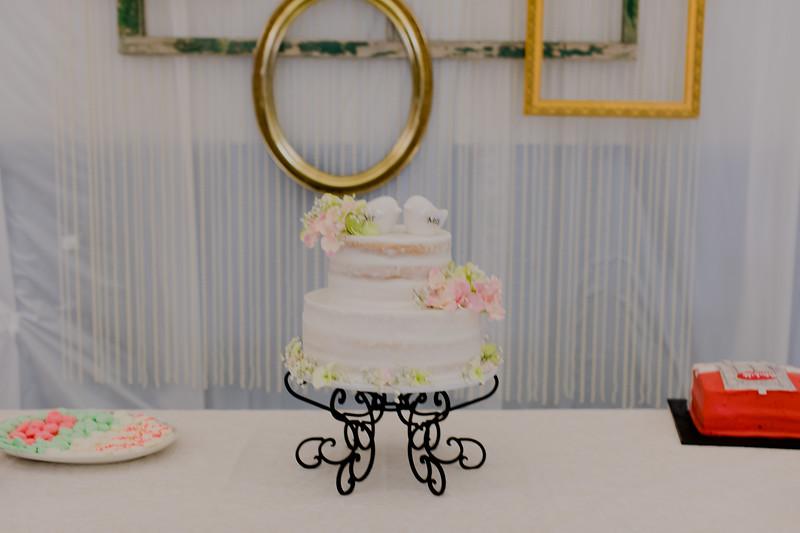 04857--©ADH Photography2017--SethCariStone--Wedding