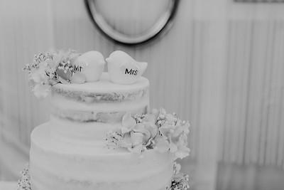 04856--©ADH Photography2017--SethCariStone--Wedding
