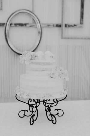 04844--©ADH Photography2017--SethCariStone--Wedding