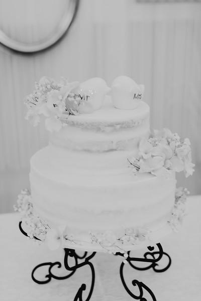 04846--©ADH Photography2017--SethCariStone--Wedding