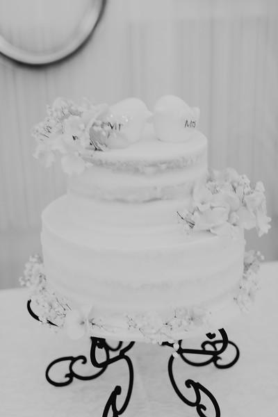 04848--©ADH Photography2017--SethCariStone--Wedding