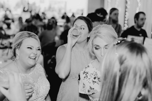 05386--©ADH Photography2017--SethCariStone--Wedding