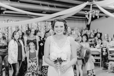05012--©ADH Photography2017--MrAndMrsViox--Wedding