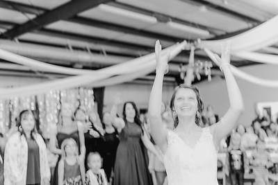 05030--©ADH Photography2017--MrAndMrsViox--Wedding