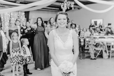 05026--©ADH Photography2017--MrAndMrsViox--Wedding