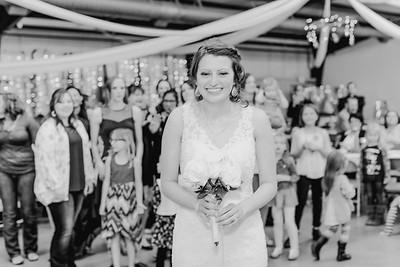 05016--©ADH Photography2017--MrAndMrsViox--Wedding