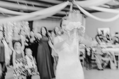 05028--©ADH Photography2017--MrAndMrsViox--Wedding