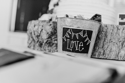 03504--©ADH Photography2017--MrAndMrsViox--Wedding