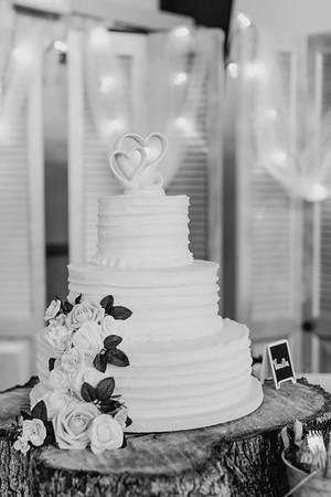 03508--©ADH Photography2017--MrAndMrsViox--Wedding