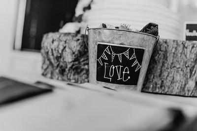 03502--©ADH Photography2017--MrAndMrsViox--Wedding