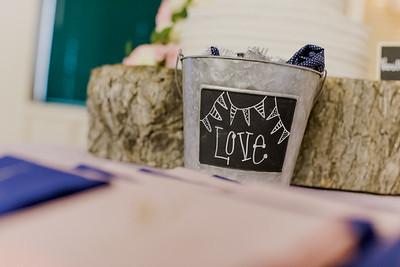 03503--©ADH Photography2017--MrAndMrsViox--Wedding