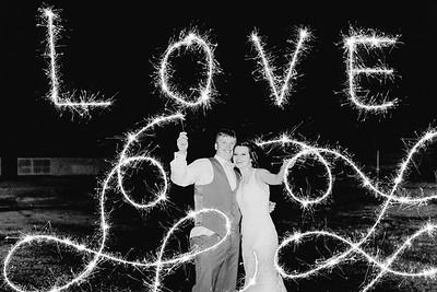 05542--©ADH Photography2017--MrAndMrsViox--Wedding
