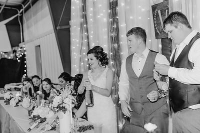 04202--©ADH Photography2017--MrAndMrsViox--Wedding