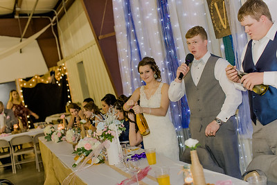 04213--©ADH Photography2017--MrAndMrsViox--Wedding