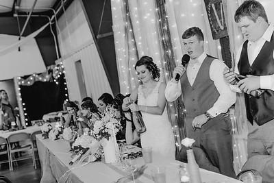 04212--©ADH Photography2017--MrAndMrsViox--Wedding