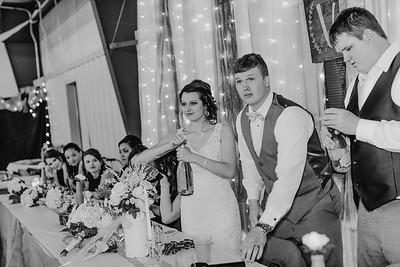 04206--©ADH Photography2017--MrAndMrsViox--Wedding