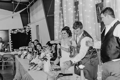 04198--©ADH Photography2017--MrAndMrsViox--Wedding