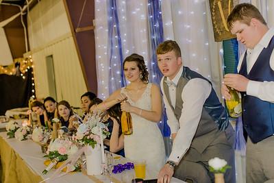 04207--©ADH Photography2017--MrAndMrsViox--Wedding