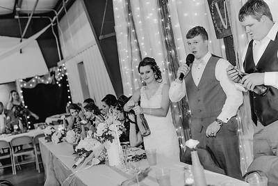 04214--©ADH Photography2017--MrAndMrsViox--Wedding
