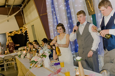 04215--©ADH Photography2017--MrAndMrsViox--Wedding