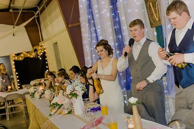 04211--©ADH Photography2017--MrAndMrsViox--Wedding